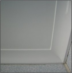 wall after Microbial application