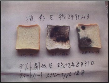 mouldy bread before and after Microbial